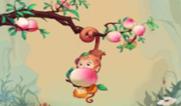 2016生肖属猴的宝宝取名宜用及忌用字眼